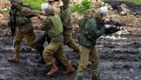İşgal Güçleri, Cenin ve El-Halil'de 10 Filistinliyi Gözaltına Aldı…