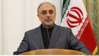İAEK Başkanı Salihi: Nükleer anlaşma, İran'ın güvenlik oluşturan bir güç olduğunu gösterdi