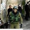 İşgal Kaynakları El-Halil'de Hamas Üyesi Hücre Ele Geçirildiğini İddia Etti…