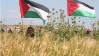 Bedran: Filistin halkı direniş seçeneğini tercih ettiğini gösterdi