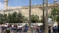 Filistinli Gençler Cuma'yı İbrahim El-Halil Camii'nde Kılma Çağrısı Yaptı.