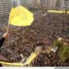 Siyonist Komutandan İtiraf: Hizbullah dünyadaki en güçlü organizasyon