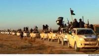 Video: İmam Ali (as)'ın IŞİD ve Vahhabi Tayfası Hakkındaki Sözleri