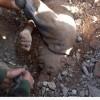 Siyonistler, Yemen'de 2265 Konutu Yıktı