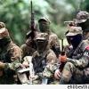 Kolombiya'da FARC bir aylık ateşkes ilan etti