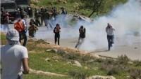 Siyonistlerle Filistinli Gençler Arasında Na'lin Bölgesinde Çatışma Yaşandı: 3 Filistinli Genç Yaralı