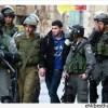 Siyonist İsrail Güçleri Batı Yaka'da Bu Sabah 7 Filistinliyi Gözaltına Aldı