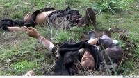 Suriye Ordusu, Kunaytra Kırsalı Samadaniye Köyüne Yönelik Terörist Saldırı Girişimini Çökertti