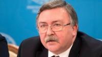 Ulyanov: İran'ın uranyum rezervlerini arttırması ABD yaptırımlarının bir sonucudur