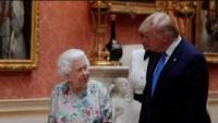 Gemi olayından sonra Tramp ve Kraliçenin Acıklı Anları
