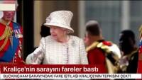 Video: Zehirlere karşı mutasyona uğrayan fareler Kraliçeyi sarayından etti!