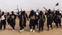 Rus senatör: IŞİD'in bölgedeki varlığı ABD'nin lehinedir