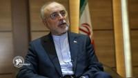 Salihi: İran ve Fransa bilimsel iş birliği yapacak