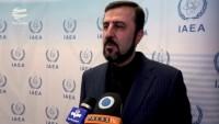 Garibabadi: İran komşu ülkelerle en iyi ilişkileri istiyor