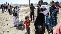 Suriye'nin Kürd bölgesinde binlerce insan evini barkını terketmek zorunda kaldı