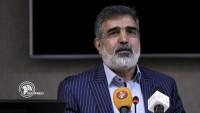 İran Atom Enerjisi Kurumu: Taahhütlerimizi azaltmaya devam edeceğiz