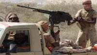 Suudilerin Kontrolü Altında IŞİD ve El-Kaide Eğitim Kampları Kuruluyor