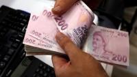 Hazine, 299.6 Milyar Lira İç Borçlanma Yapacak