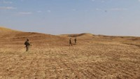 Haşdi Şabi Mücahidleri Al-Anbar Bölgesinde Bir Terör Şebekesi İmha Edildi