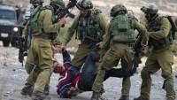 Kasım ayında 360 Filistin'li gözaltına alındı
