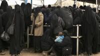 Amerika IŞİD ailelerini Suriye'den Irak'a taşıyor