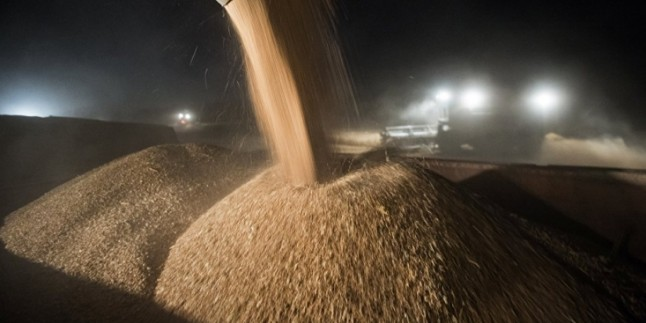 Türkiye, Suriye'den 20 Bin Ton Tahıl Ürünü Alacak