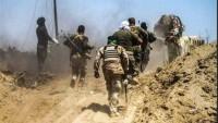 Haşdi Şabi ile Işid arasında Çatışma: 13 Terörist Öldü, 3 Mücahid İse Şehid Düştü