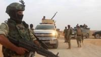 Haşdi Şabi Mücahidleri Aralarında 2 Kadın Teröristin de Bulunduğu 17 IŞİD Teröristini Sağ Olarak Ele Geçirdi