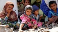 Yemen petrol şirketinden insani facia uyarısı