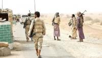 Yemen Hizbullahı, El-Kaide teröristlerinin bulunduğu bölgeyi ele geçirdi! Yüzlerce terörist öldü!