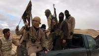 Rusya Savunma Bakanlığı: Nusra Cephesi Yeni Bir Kimyasal Tezgah Peşinde