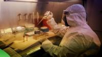 Gazze Sağlık Bakanlığı: Gazze Şeridi'nde korona test kapasitesi yarıya düştü