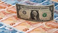 Türk lirası değer kaybına devam ediyor
