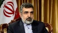 Şehit Fahrizade'nin UAEA'nın müfettişleriyle görüştüğü iddiaları yalanlandı