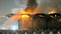 Müçtehid: Cidde'deki Patlama Suudi Rejiminin İşi