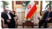 Hamas Yetkilisi: İran, başından beri her zaman mazlum Filistin halkının hamisidir