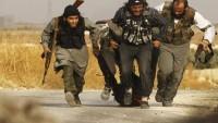 Iraklı analist: Terör örgütü DEAŞ yakın gelecekte diz çökecektir