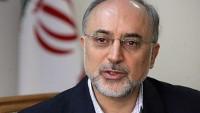 Salihi: UAEK'nın gelecek konferansı İran için önemlidir