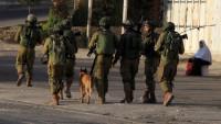 İsrail askerleri 12 Filistinliyi gözaltına aldı