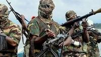 Boko Haram binlerce erkek çocuğu kaçırdı