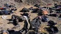 Irak savunma bakanlığı: 900'ü aşkın IŞİD teröristi öldürüldü