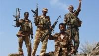 Yemen ordusu yeni zaferler kazandı