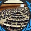 İran'dan BM insan hakları konseyine tekpi