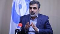 Kemalvendi: Erak ağır su reaktörü yürürlüğü belgesi imzalanıyor