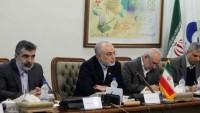 Çin Nükleer Enerji Ajansı Başkanı, İran Atom Enerjisi Kurumu Başkanı ile görüştü