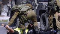 Siyonist İsrail yahudilere 400 bin silah dağıttı