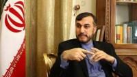 Abdullahiyan: İran terörle mücadelede desteğini sürdürecek