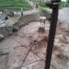 Pakistan'da şiddetli yağış: 12 ölü