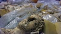 Irak ve Suriye'den kaçırılan tarihi eserlerin adresi Amerika