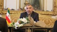 İran büyükelçisi: İslam ülkeleri terörizm belasına karşı ortak mücadele etmeli